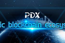 PDX(全息智信)拥有三项核心专利的国产公链平台|DemoShow Online(第21期)