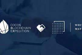 Cocos-BCX 与 纯白矩阵就 IDE 工具、链游生态等达成战略合作