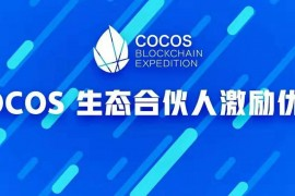 COCOS 生态合伙人激励优化