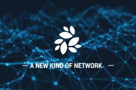 NKN:去中心化的网络传输基础设施 | DemoShow Online(第60期)