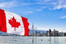 加拿大银行行长:相比加密货币更喜欢现金