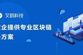 成立3年获数亿元投资  艾鸥科技如何搭建联盟链一站式Bass平台丨链茶访