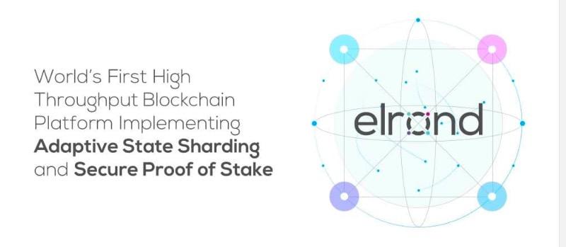 Elrond Network可伸缩的价值转移协议 | DemoShow Online(第47期)