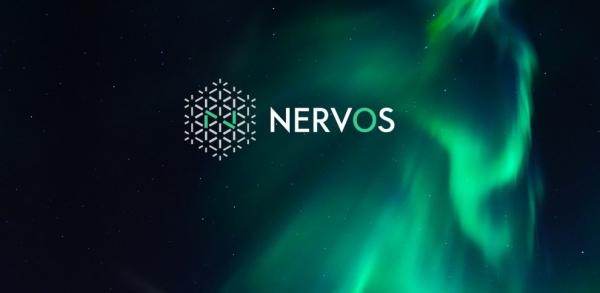 Nervos:淡然上线背后的理性显现