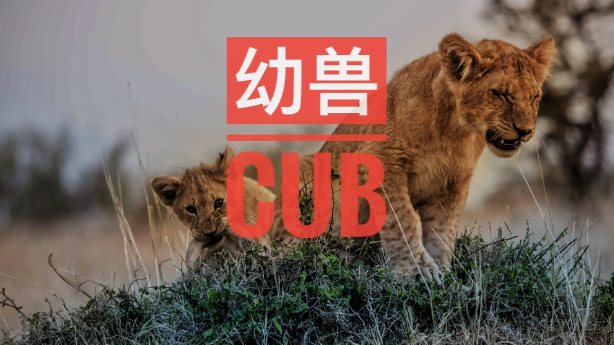 幼兽CUB——崛起的去中心化交易所三巨头